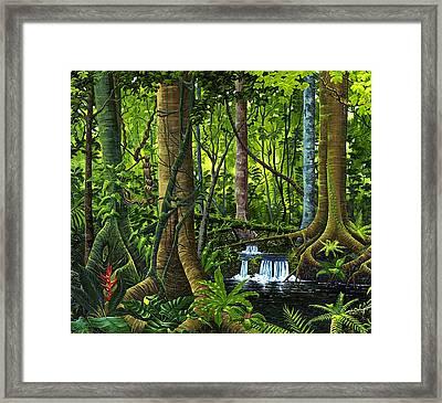 Osa Peninsula Rainforest Framed Print
