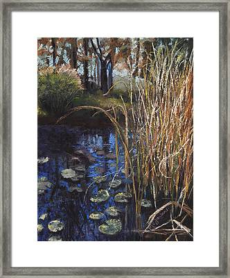 Pads And Tails Framed Print by Lorraine McFarland
