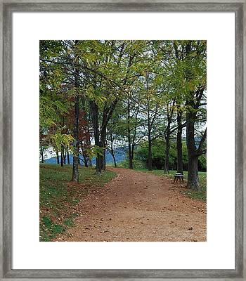 Pathway Framed Print by Eric Liller