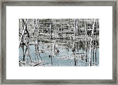 Patterns Of Life Framed Print by Reb Frost