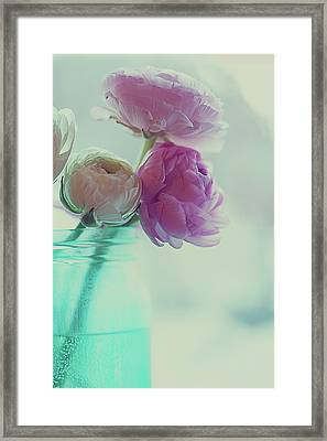 Pink And White Ranunculus Flowers In Vase Framed Print
