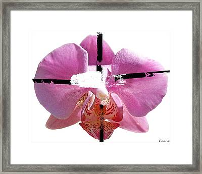 Pink Cowboy Hat Crucio Framed Print by Geronimo