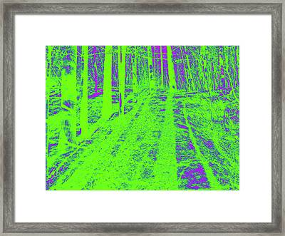 Polar Day Framed Print by John  Bichler