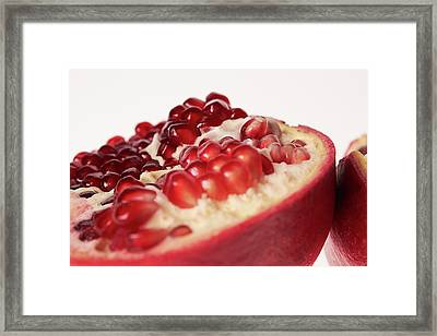 Pomegranate Framed Print by Shioguchi