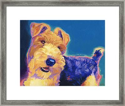 Pop Wire Hair Fox Terrier Framed Print by Shawn Shea