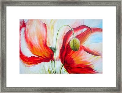 Poppies. Framed Print by Jacqueline Klein Breteler