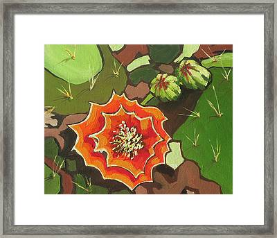 Prickly Pear Bloom Framed Print by Sandy Tracey