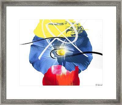 Primaries Framed Print