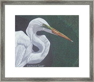 Profile In White Framed Print