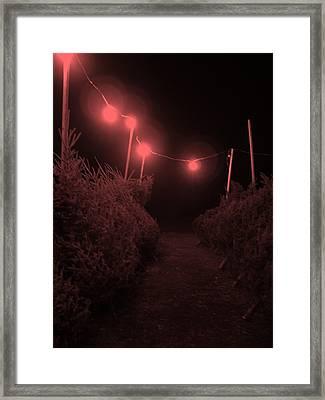 Red Night Framed Print by John  Bichler