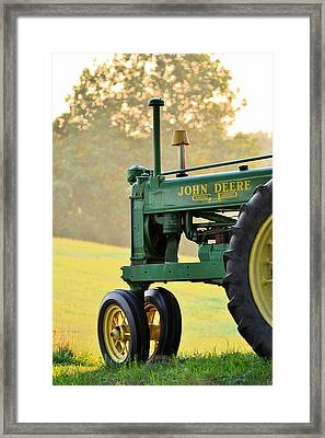Resting Framed Print by JD Grimes