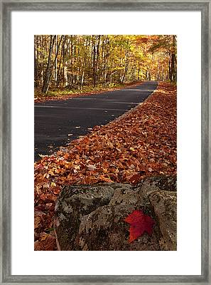 Roaring Fork Motor Trail In Autumn Framed Print by Andrew Soundarajan
