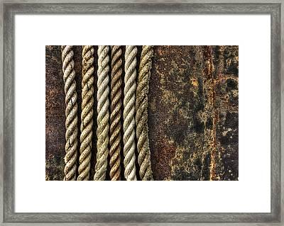 Ropes Framed Print by Evelina Kremsdorf