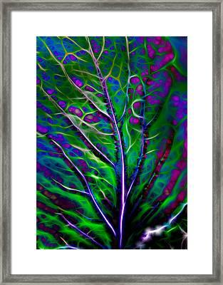 Scintillating Leaf Framed Print by Hakon Soreide