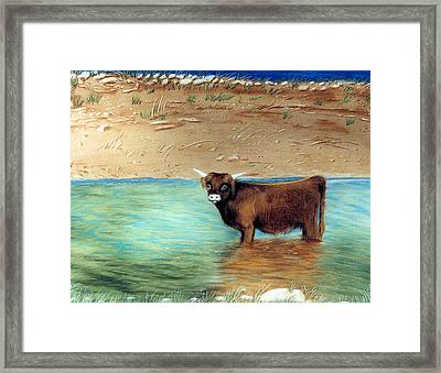 Framed Print featuring the pastel Scottish Highland Bull by Jan Amiss