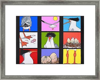 Sea Bird Kaleidoscope Framed Print by Renata Wright