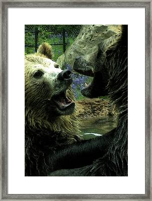 Framed Print featuring the digital art Silly Bears by Holly Ethan