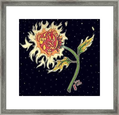 Solar Sun Flower Framed Print by Law Stinson