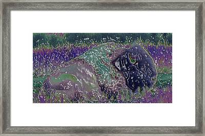 Spirit Of The Buffalo  Framed Print by Juls Adams