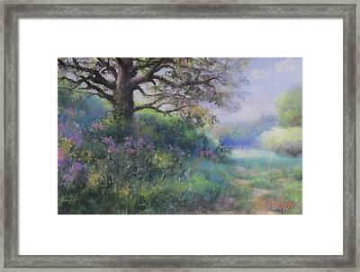 Spring Walk Framed Print