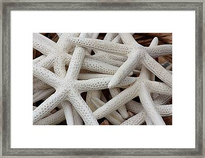 Starfish In A Basket Framed Print