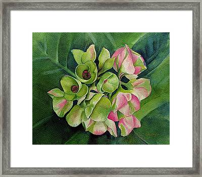 Framed Print featuring the painting Summer Beauty by Margit Sampogna