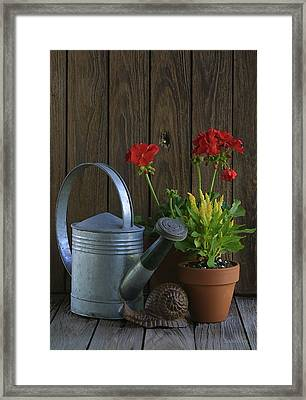Framed Print featuring the photograph Summer Geraniums by Dodie Ulery