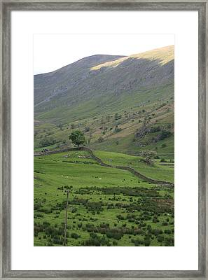 Sun On The Tops Framed Print by Andy  Mercer