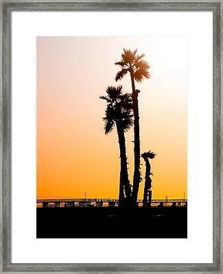 Sunset Palms Framed Print