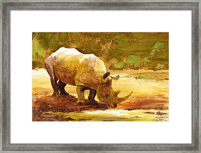 Sunset Rhino Framed Print by Brian Kesinger