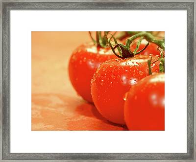 The 3 Tomatoes Framed Print