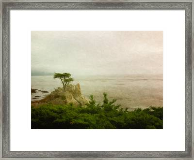 The Lone Tree Framed Print by Venura Herath