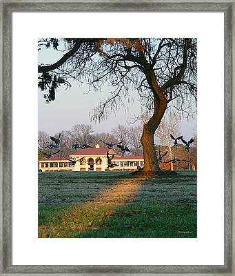 The Migration Framed Print by Albert Stewart
