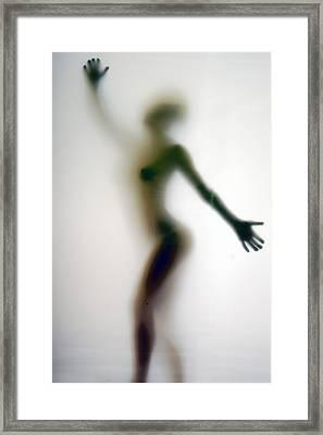 The Screening Room II Framed Print by Clayton Bruster