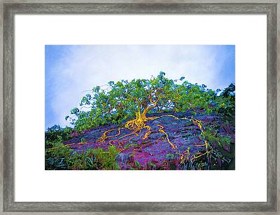 The Stand Framed Print by David Clark