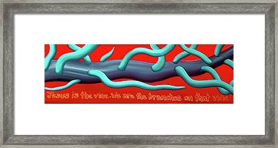 The Vine Framed Print by Barbara Stirrup