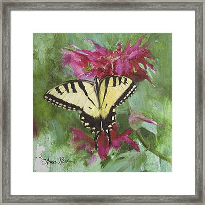 Tiger Swallowtail Framed Print by Anna Rose Bain