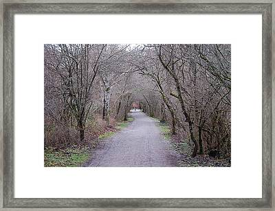 Trail Tunnel Framed Print by J D Banks