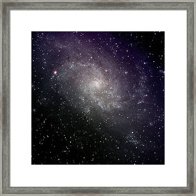 Triangulum Galaxy Framed Print by A. V. Ley