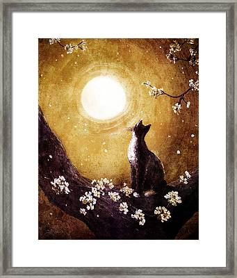 Tuxedo Cat In Golden Cherry Blossoms Framed Print by Laura Iverson