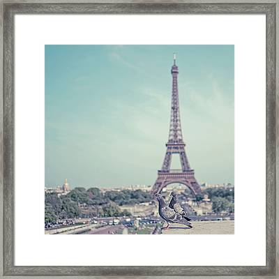 Two Doves In Front Of Eiffel Tower Framed Print