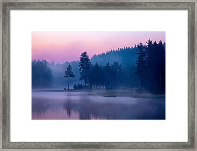 Violet Lake Framed Print by Evgeni Dinev