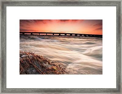 Wild River Framed Print by Evgeni Dinev