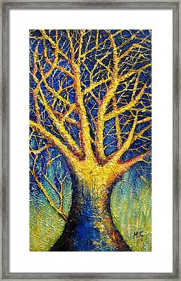 Wonder Tree Framed Print