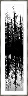 Yellowstone Panel 2 Framed Print by Rachel Barner