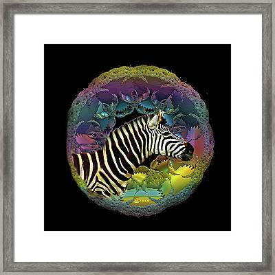 Zebra Framed Print by Julie Grace