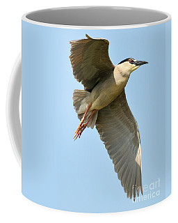 Black Crown Night Heron Coffee Mug