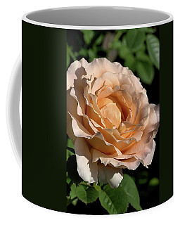 Coffee Mug featuring the photograph Orange Rose by Joy Watson