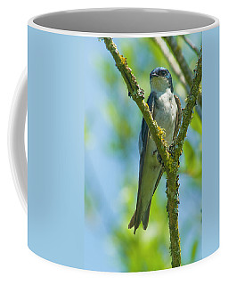 Coffee Mug featuring the photograph Bird In Tree by Rod Wiens