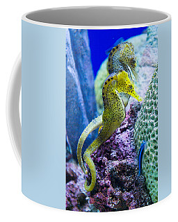 Colorful Seahorses Coffee Mug